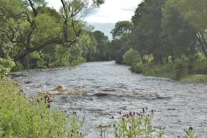river-pools-105-A900x600